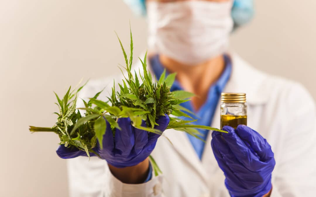 TGA Approves Second Registered Medicinal Cannabis Product